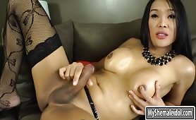 Perfect ladyboy in stockings likes jerking her cock
